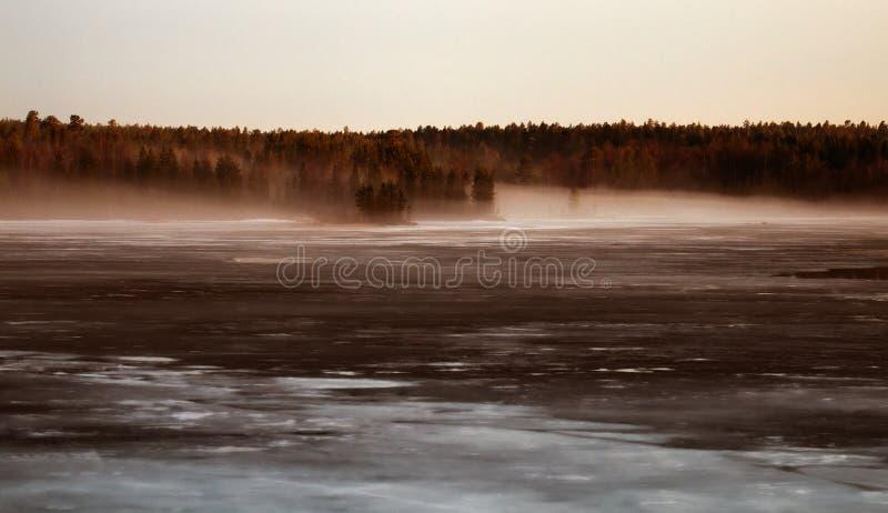 春夜在雾中的森林湖 免版税库存照片