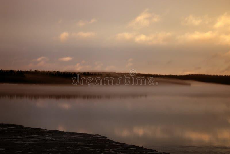 春夜在雾中的森林湖 库存图片