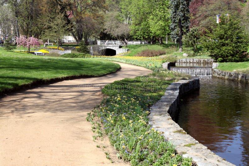 春天公园在捷克 库存照片