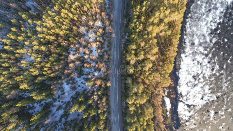 春天农村路鸟瞰图在有熔化的冰湖的美国长叶松森林里 免版税库存照片