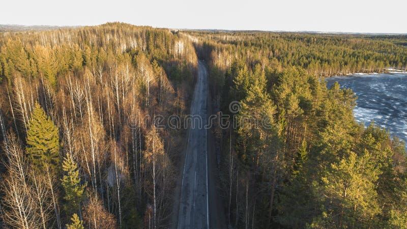 春天农村路鸟瞰图在有熔化的冰湖的美国长叶松森林里 库存照片