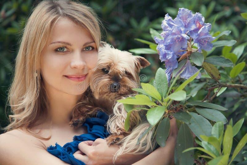 春天和狗 免版税库存照片