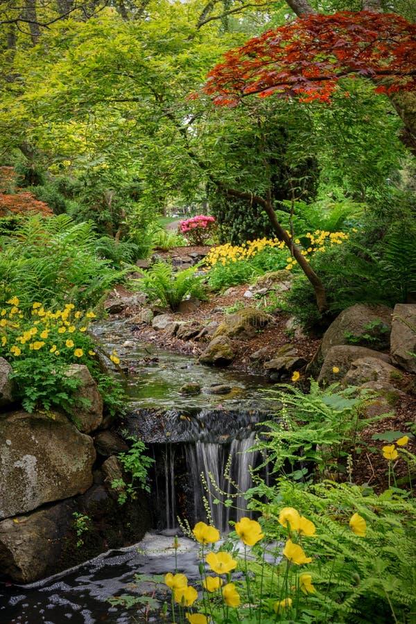 春天在信标岗公园 库存照片