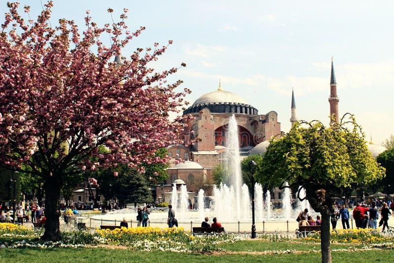 春天在土耳其 免版税库存照片