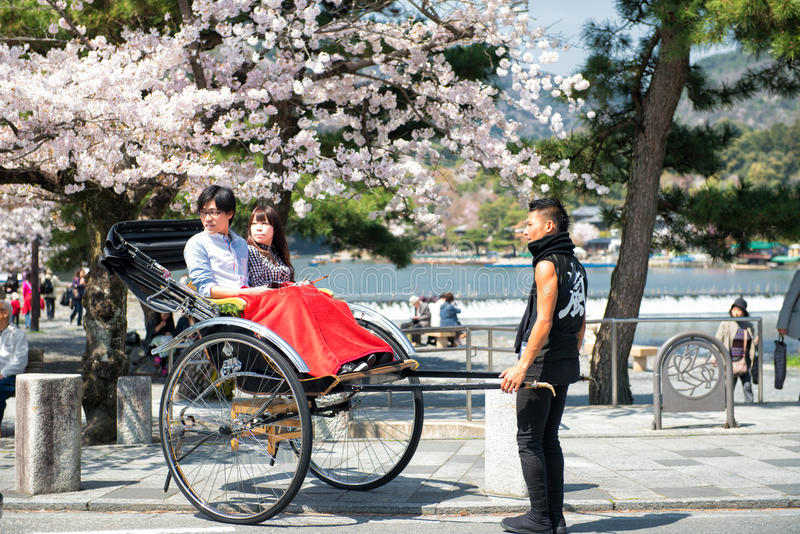 春天在日本 库存图片