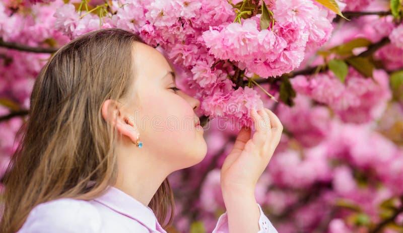 春天在植物学庭院里 那是春天怎么嗅到 t 女孩享受春天 在桃红色花的孩子  免版税库存图片