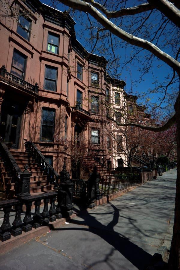 春天在纽约 免版税图库摄影