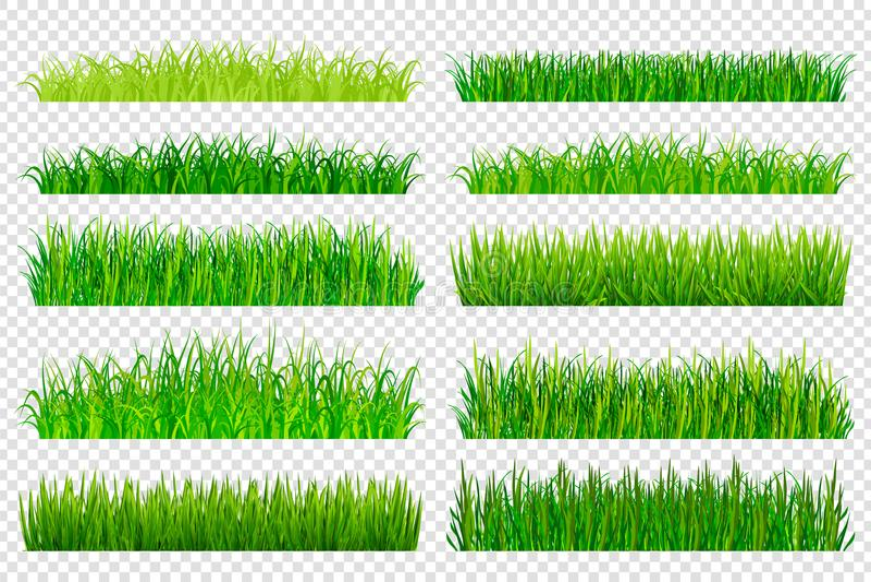 春天在透明背景隔绝的绿草边界 v 皇族释放例证