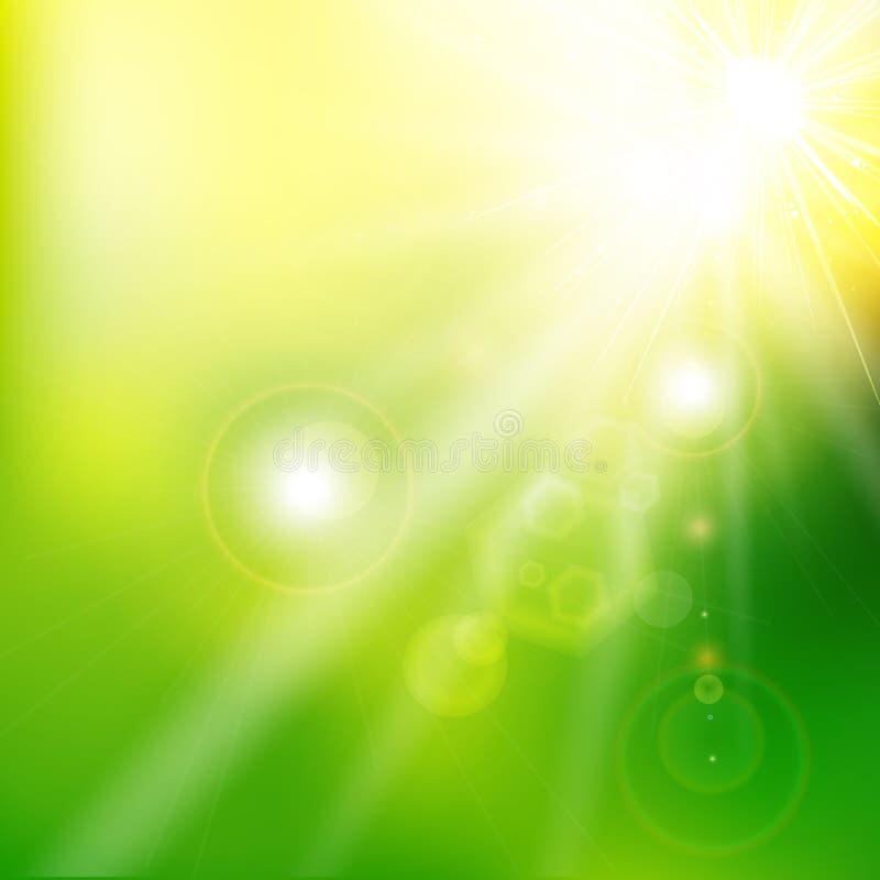 春天夏天阳光火光摘要绿色背景 ve