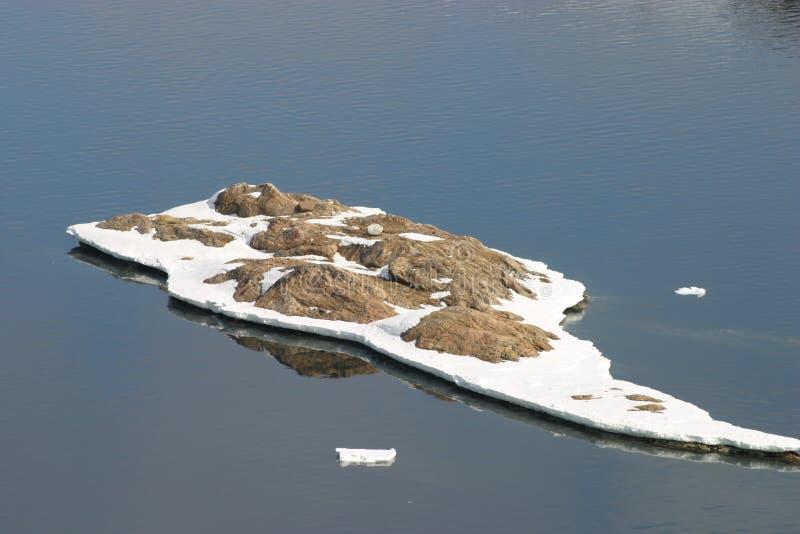 春天大气格陵兰 库存图片