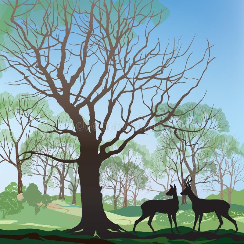 春天小山和森林风景 向量例证