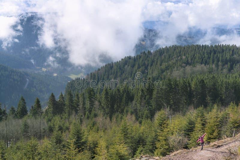 春天山在北黑森林 免版税库存照片