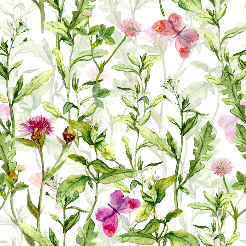 春天庭院:草,花,蝴蝶 葡萄酒水彩 无缝的模式 库存例证