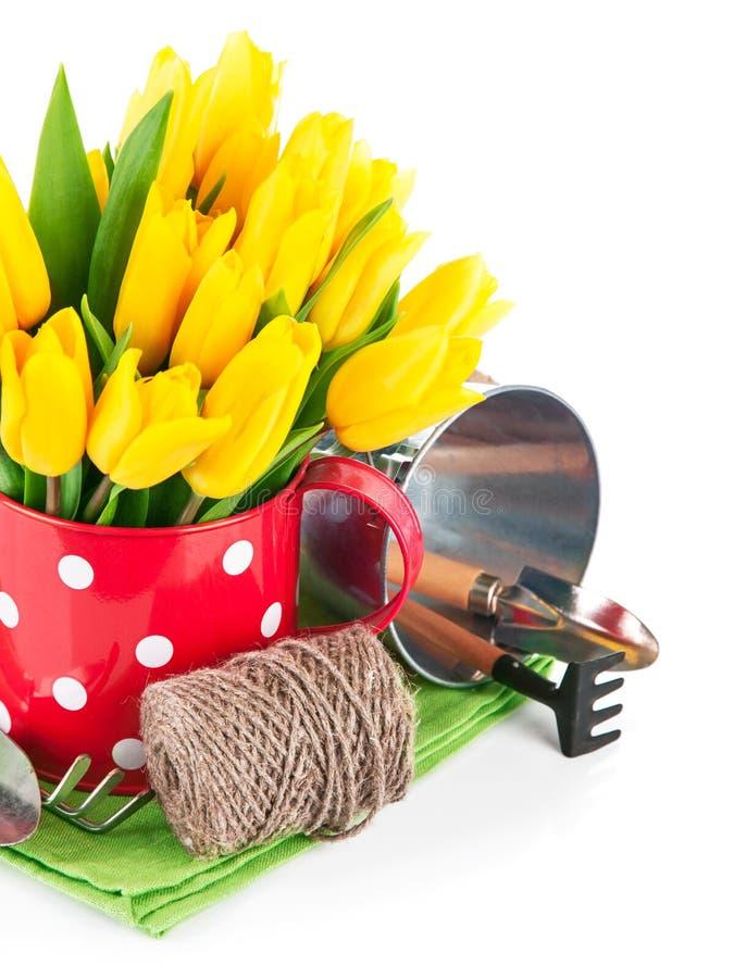 春天开花与园艺工具的郁金香 免版税库存照片