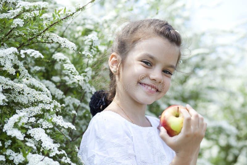 春天开花的美丽的小女孩 免版税图库摄影