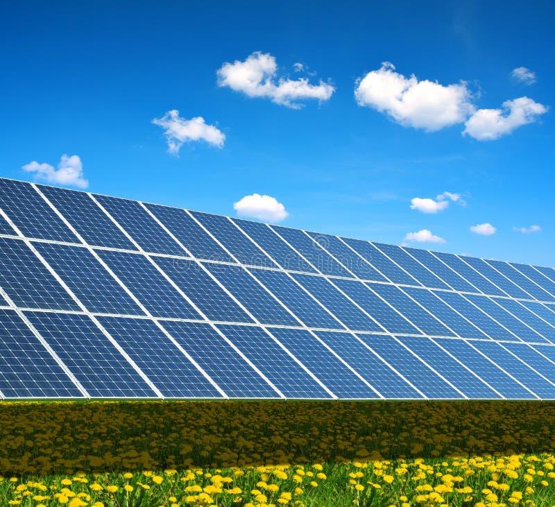 春天开花的草甸的太阳动力火车 免版税库存图片