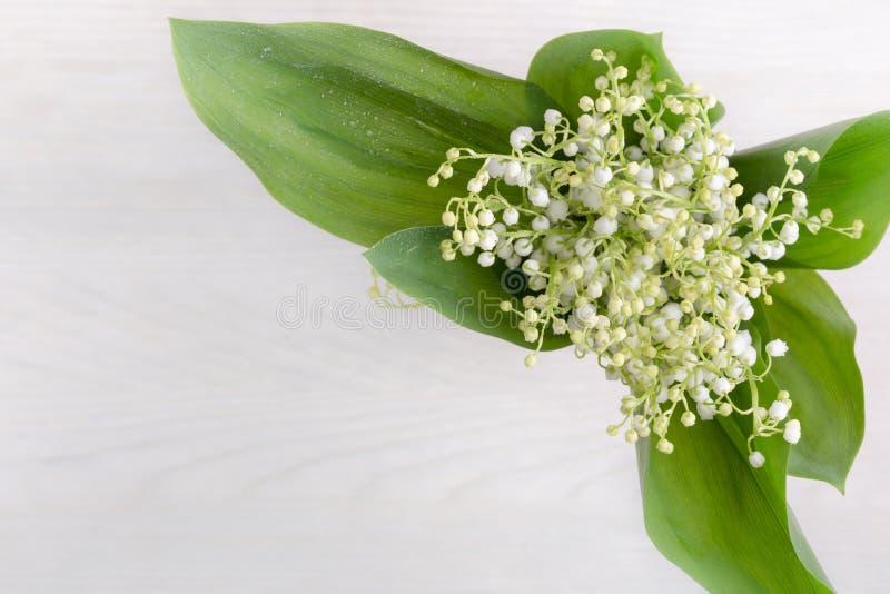 春天开花谷百合在白色木桌,顶视图上的 免版税图库摄影