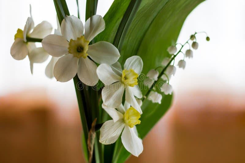 春天开花黄水仙和铃兰在花束的 库存图片