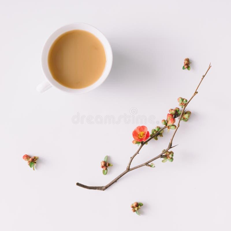 春天早晨咖啡 平的位置 免版税图库摄影