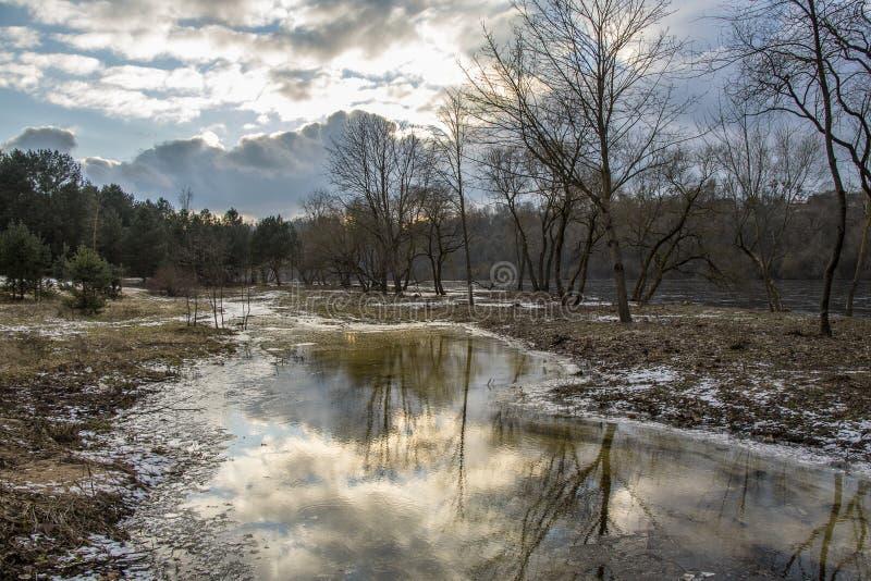 春天来到河岸 冬天在河附近结束与树的风景 图库摄影