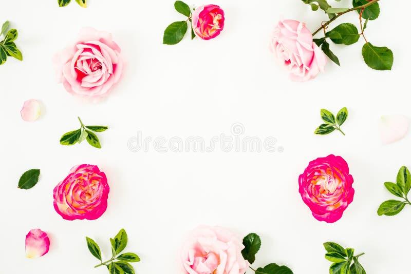 春天框架背景 粉红彩笔玫瑰花和绿色叶子的花卉构成在白色背景 平的位置,上面 图库摄影