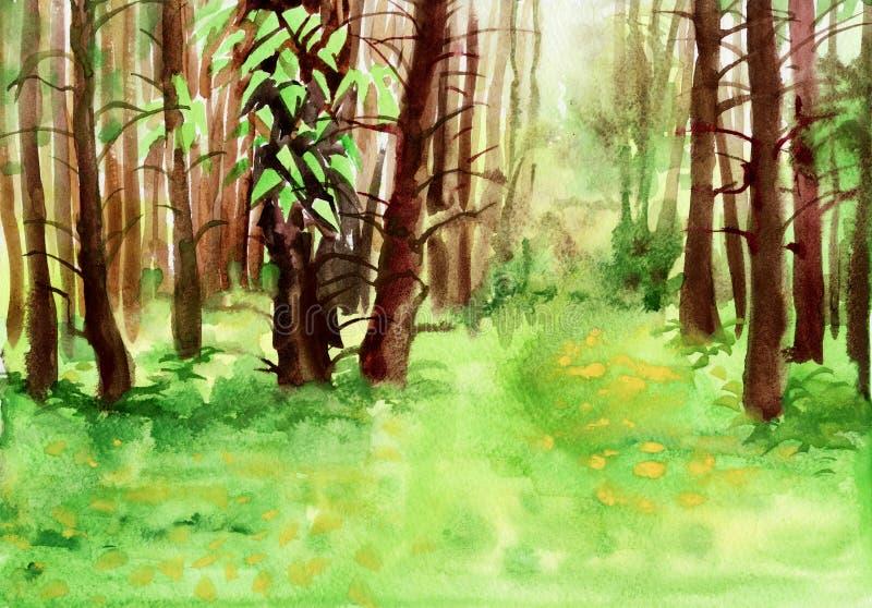 春天森林水彩绘画 皇族释放例证