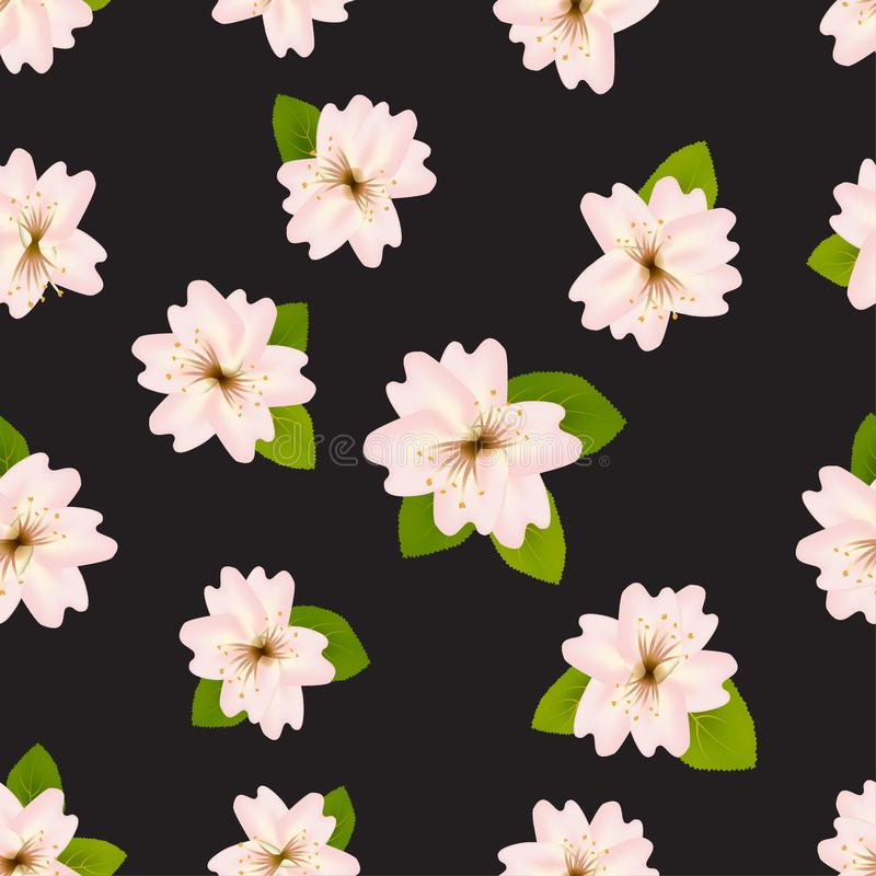 春天樱花 与JapaneseÂ佐仓的Â无缝的样式 背景黑色花粉红色 RomanticÂ传染媒介例证 向量例证