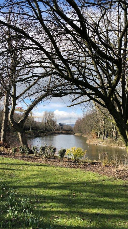 春天步行在河的公园 免版税库存图片
