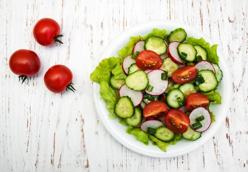 春天沙拉用蕃茄、黄瓜和萝卜 免版税库存照片