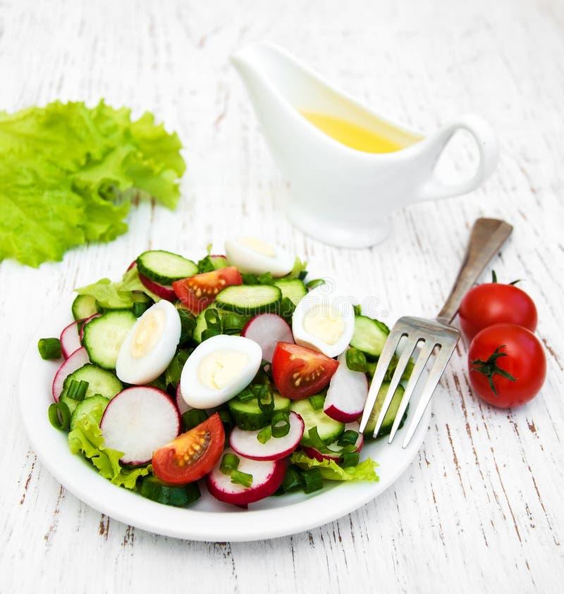 春天沙拉用蕃茄、黄瓜和萝卜 库存图片
