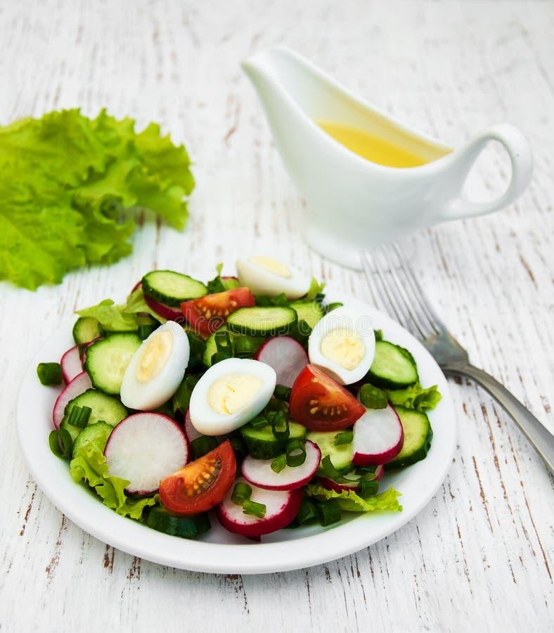 春天沙拉用鸡蛋、黄瓜和萝卜 库存图片