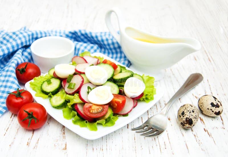 春天沙拉用鸡蛋、黄瓜和萝卜 图库摄影