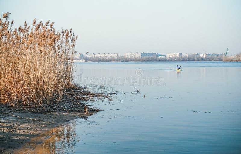 春天由河的早晨锻炼 免版税库存照片