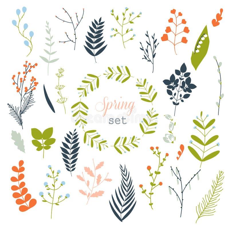 春天的汇集开花,叶子,蒲公英,草 向量例证