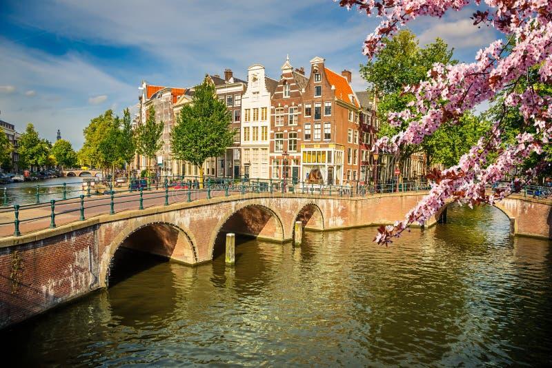 春天的阿姆斯特丹 库存图片