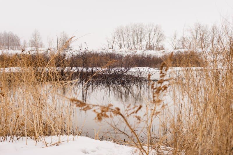 春天的风景,雪融化,美丽的河流 俄罗斯,乌拉尔,3月 图库摄影