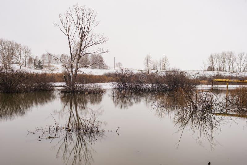 春天的风景,雪融化,美丽的河边 俄罗斯,乌拉尔,3月 库存图片
