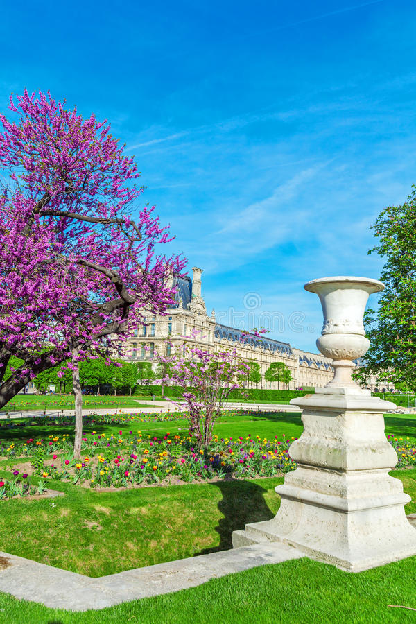 春天的,巴黎,法国Tuileries庭院 免版税库存图片