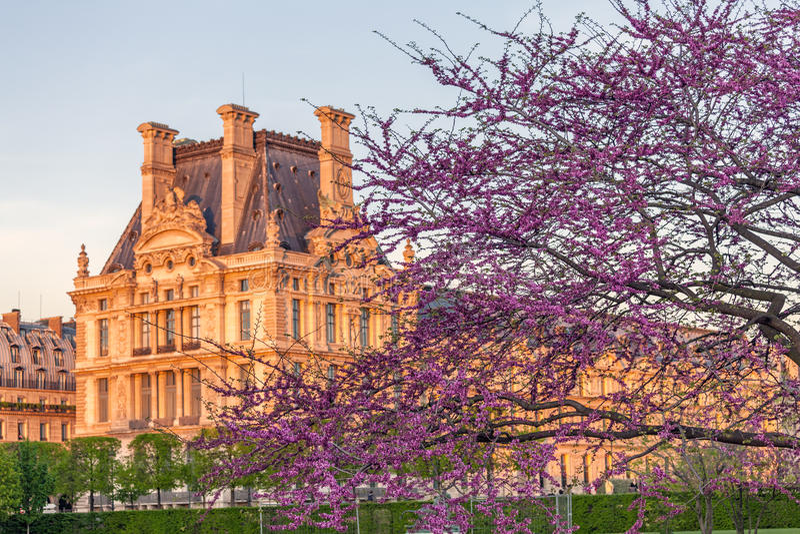 春天的,巴黎,法国Tuileries庭院 免版税库存照片
