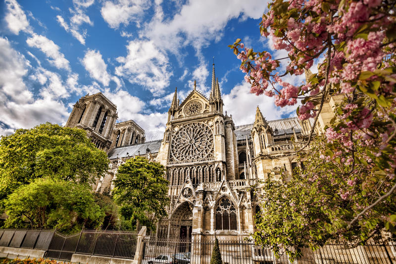春天的Notre Dame大教堂,巴黎,法国 免版税库存图片