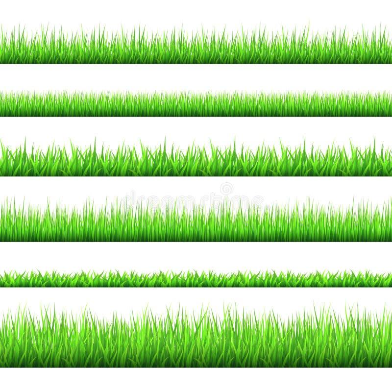 春天绿草边界在白色背景设置了 向量例证