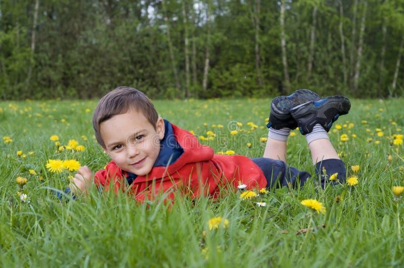 春天自然的孩子 库存照片