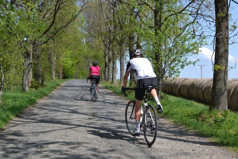 春天自行车骑马通过树大道 免版税库存照片