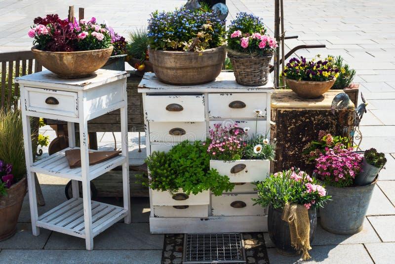 春天花五颜六色的灌木,种植在老罐、桶和箱子有白色家具的 在花卉装饰的新的方向 免版税库存图片