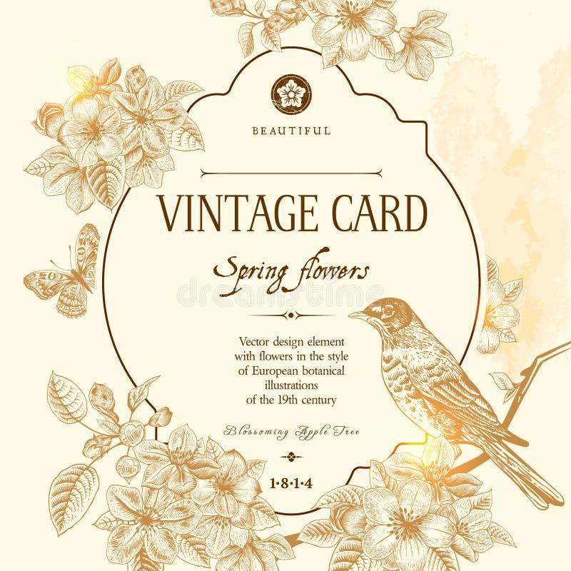 春天花卉传染媒介葡萄酒卡片 皇族释放例证