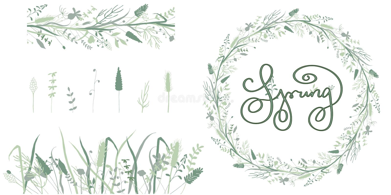 春天花卉框架和无缝的边界和草本元素 皇族释放例证