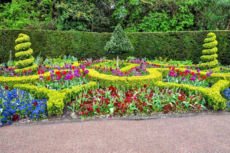 春天花在董事的公园,伦敦,英国 免版税库存照片