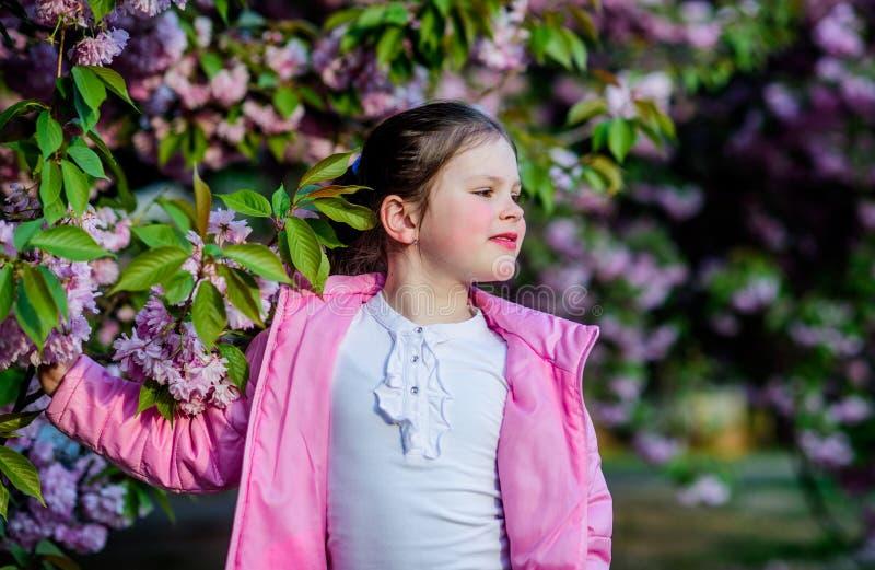春天花绽放的女孩小孩 享用嫩绽放好日子的气味 佐仓花概念 华美的花 库存图片