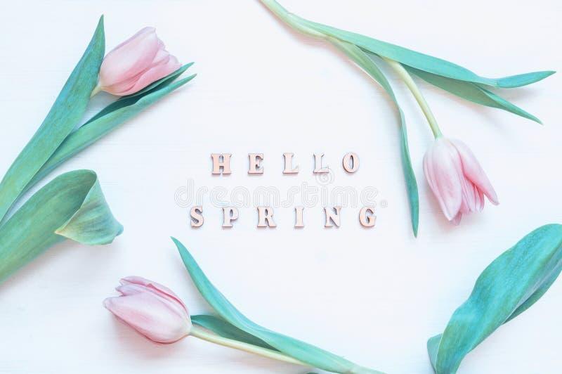 春天花背景-桃红色郁金香花和木题字你好春天在白色背景 免版税库存照片