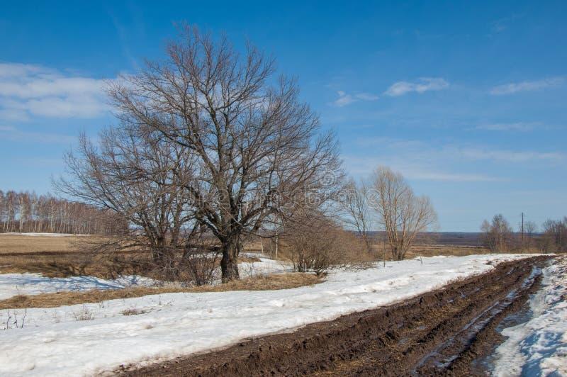 春天被洗涤的路 路 在路的泥 库存图片
